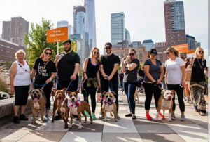 Strutt Your Mutt 2020 @ New York | New York | United States