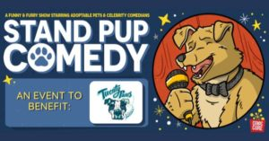 Stand Pup Comedy Show @ ONLINE